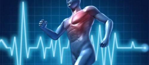 Attività motoria per cardiopatici Grocco
